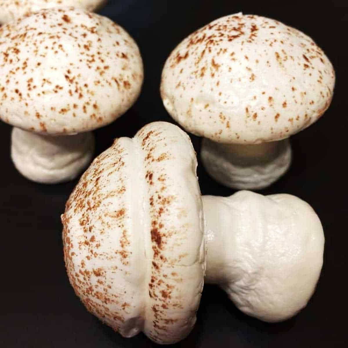 Three meringue mushrooms cookies on a black background
